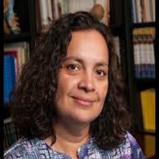 Associate Chancellor and Vice Provost for Diversity & Professor of Political Science and Latin American and Latino Studies, UIC